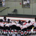 White Hawks Girls Hockey Qualifies for State