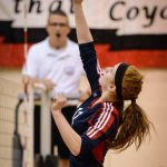 Volleyball Falls to Reed City