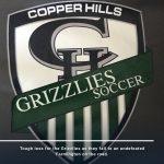 Girls Varsity Soccer falls to Farmington 2 – 0