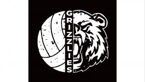 Volleyball:  2nd Round & Quarter-Finals