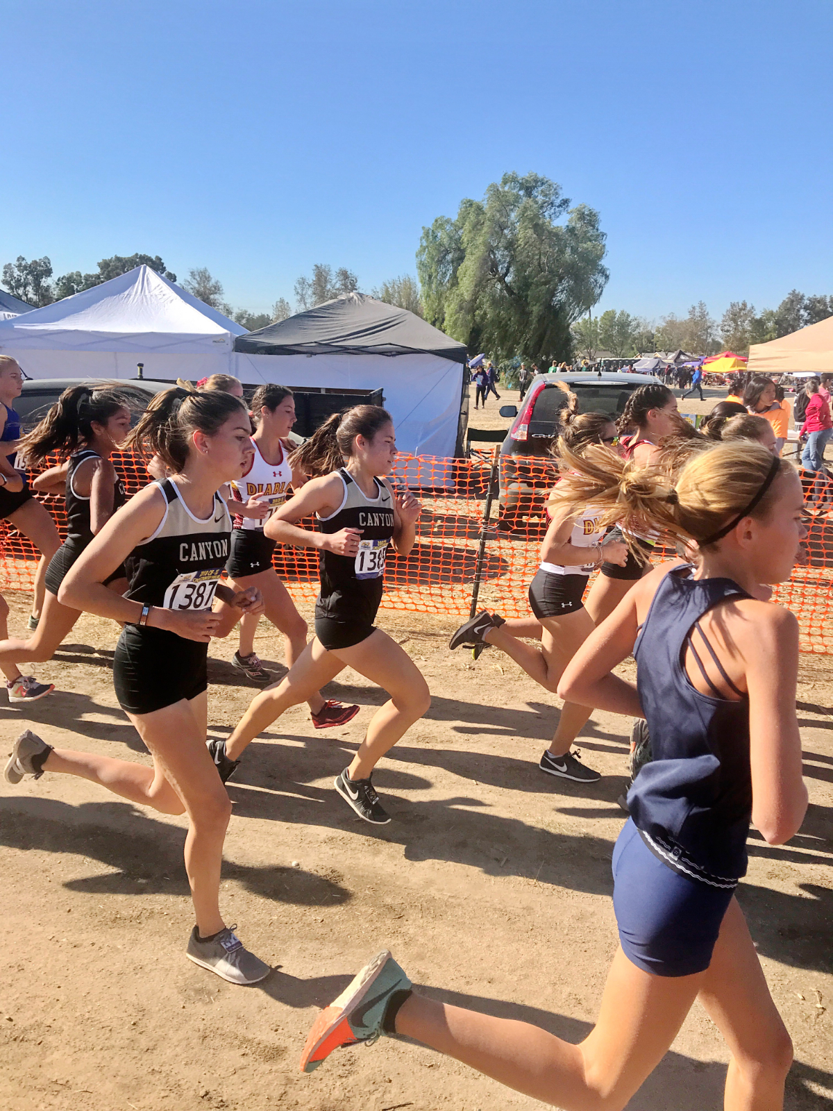 Cross Country in CIF Prelims