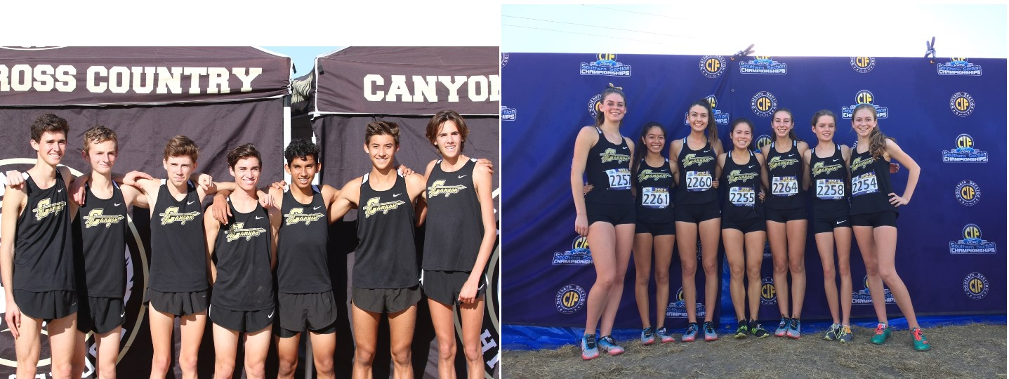 Boys and Girls Cross Country qualify for CIF Finals!