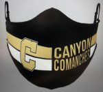 Canyon Spirit Masks available now!