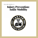Wellness Wednesday – Ankle Mobility