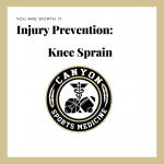 Wellness Wednesday – Injury Prevention:  Knee Sprain
