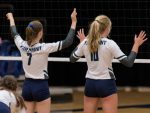 Firebirds Sweep The Vikings