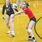 Trojans fall to top-ranked Lions in district final – Troy Daily News