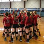 Cardinal Volleyball Wins Their First Round Playoff Game