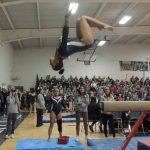 District Gymnastics