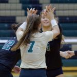 Game Day in the Gator Pit – Volleyball Playoff Time!