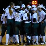 Gators Softball Camp Announced for this Summer