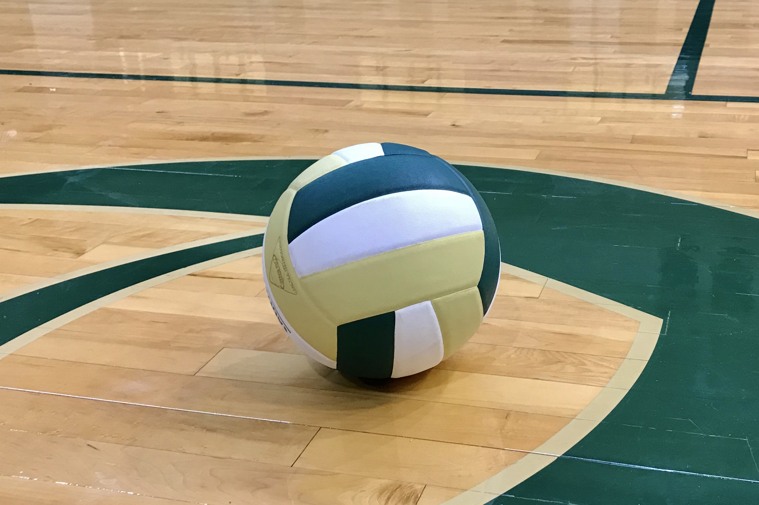 Women's Volleyball Plays Host to Conway In First Round of AAAAA State Playoffs