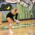Photo Gallery - Varsity Volleyball vs Rock Hill 2018