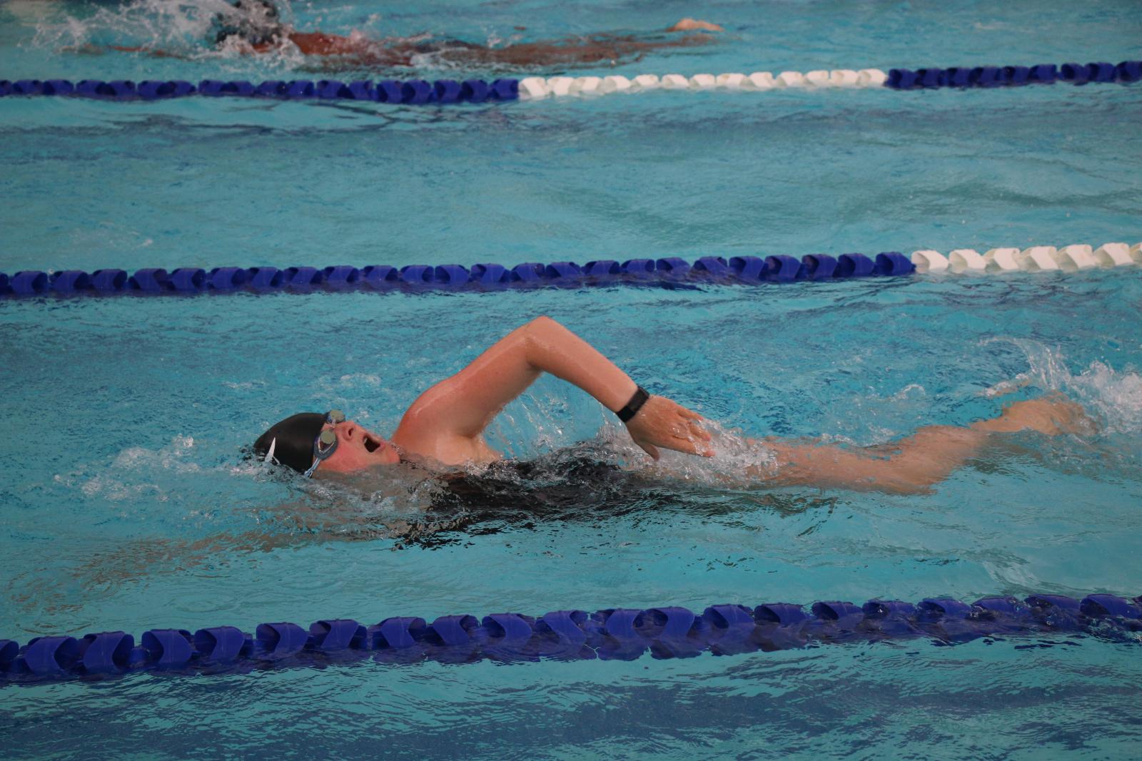 Photo Gallery: Gator Swimming Tri-Meet vs White Knoll, Camden/Lugoff-Elgin