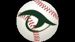 River Bluff 2021 Summer Camp Info – Gator Baseball