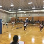 Lady Falcs Tame the Bears in their Opening Night Volleyball Match