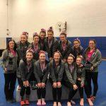 Linden Fenton and Lake Fenton Gymnastics – Conference Champs!!