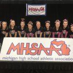 Linden, Fenton and Lake Fenton Gymnastics Team Finish 10th in the State