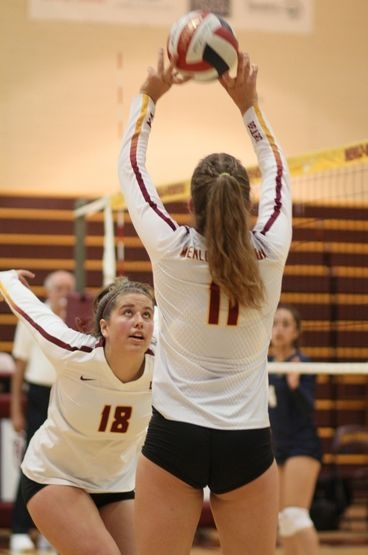 Bears Grab First in PAL Bay Division Volleyball