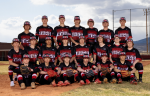 State Baseball Bracket 2021 – Go Rams!