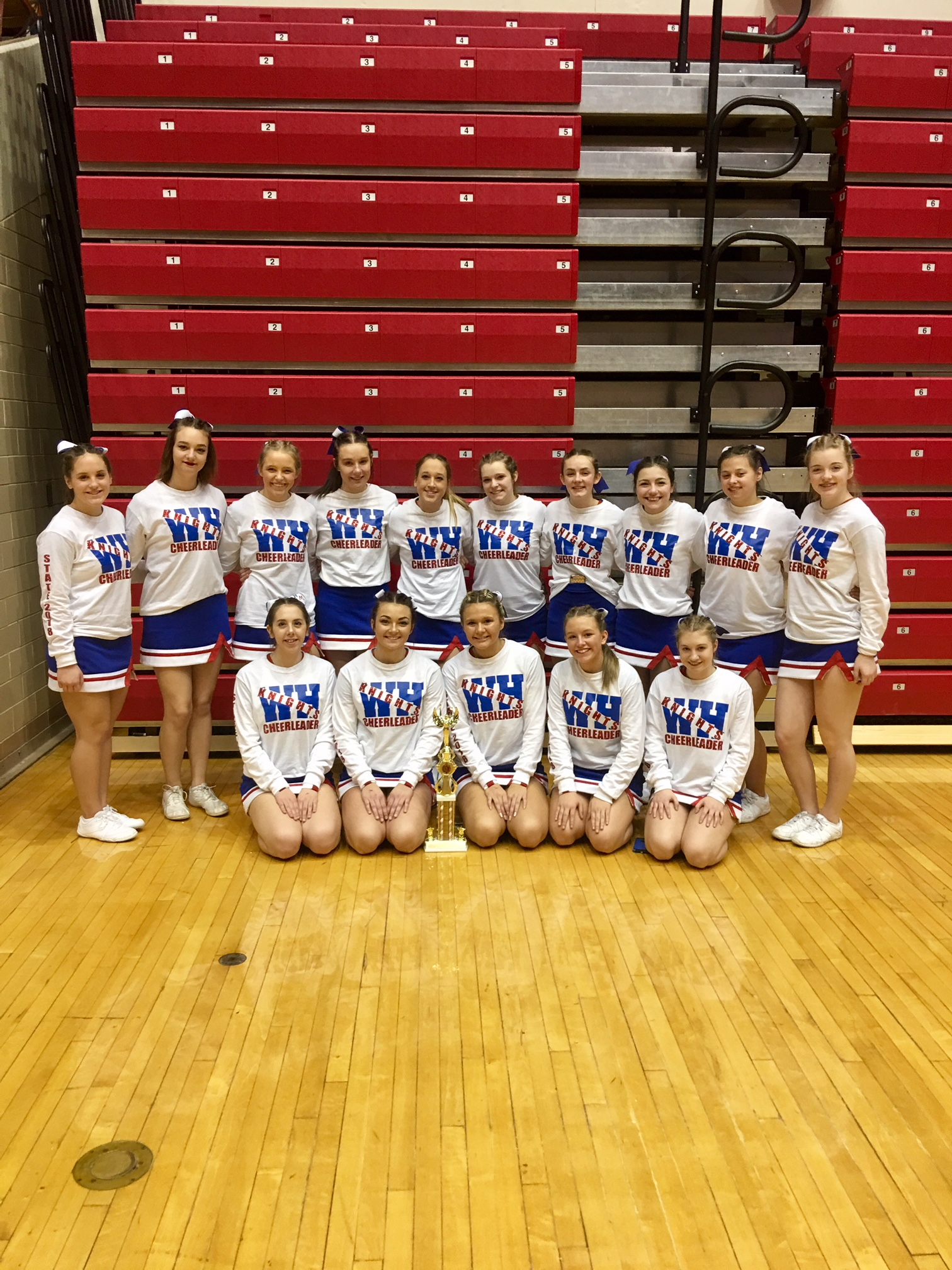 Cheerleading Finishes 13th at State Cheer and Dance Competition