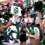 Green and White Game