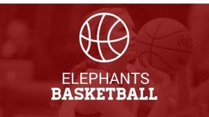 Girls Basketball 2016-2017 School Year