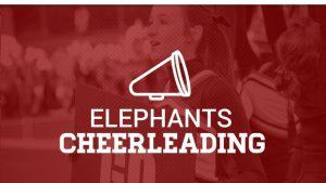 Middle School Cheer Squad 2016-2017 School Year