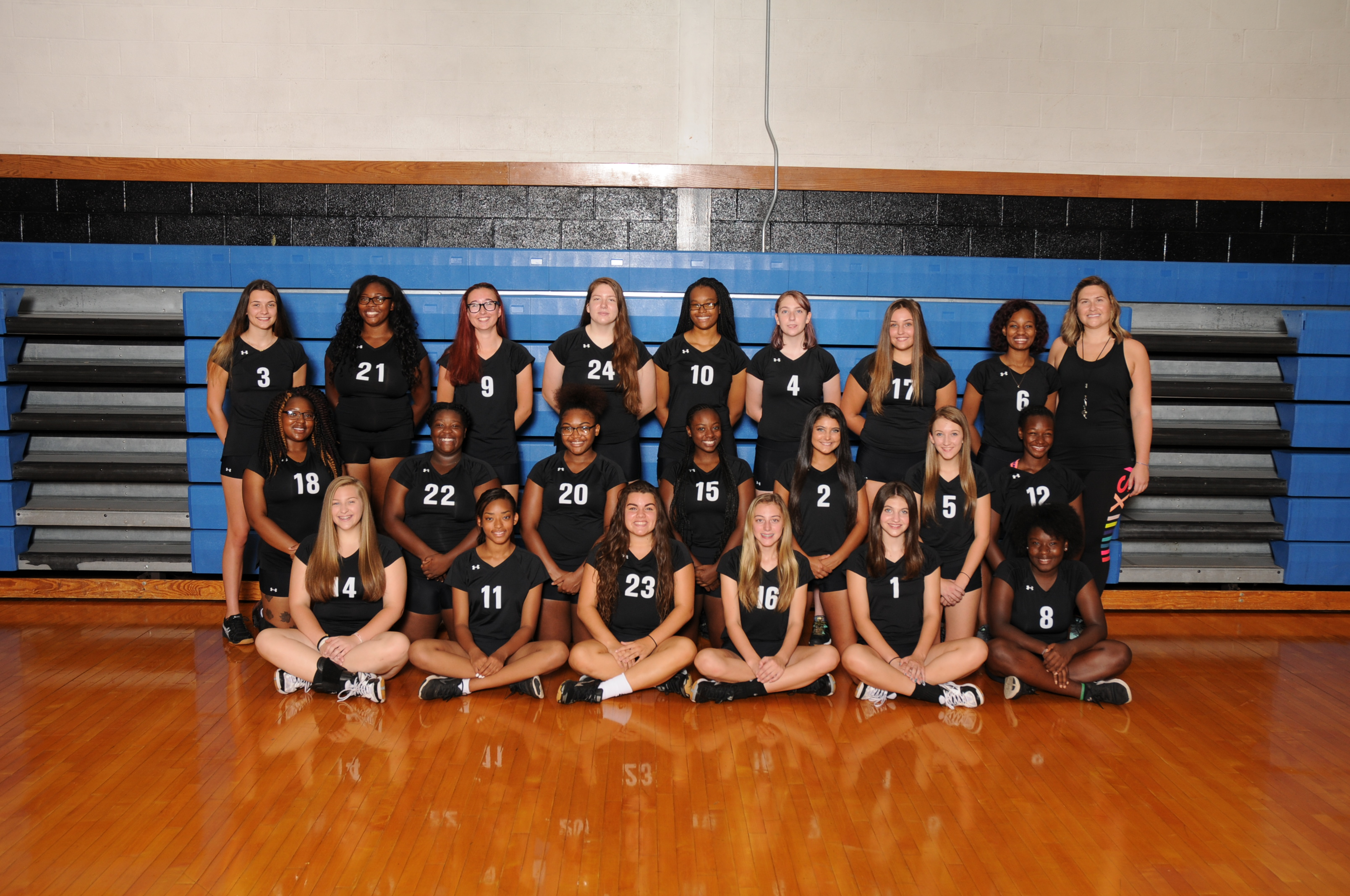 Girls Volleyball 2017