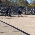 Softball Falls in Pre-Districts