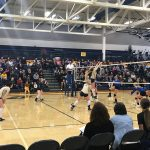 Volleyball Holds Off Gladwin, Advances to Regional Finals