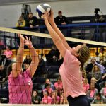 Dig Pink Volleyball Game
