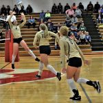 Volleyball Bows Out of State Tournament