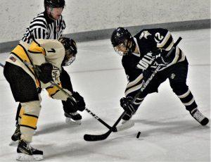 2018-19 Hockey