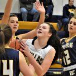 Photos: Girls Basketball Tournament Run