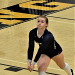 Varsity Volleyball Sweeps Petoskey