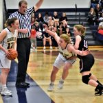 Girls Basketball Beats Reed City, Advances to District Finals