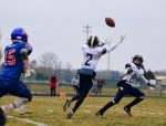 Vikings Upset #1 Seed Edwardsburg, Punch Ticket to Ford Field