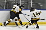 Hockey Falls 5-3 to Cheboygan