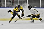 Hockey Picks Up Win Over Lakeshore Badgers