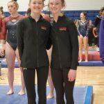 District Gymnastics Results