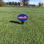 Havlik Takes in State Finals In Golf