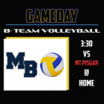 B – Team Volleyball in action at home!