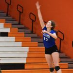Hawks Do Everything but Win in District Volleyball Semifinal Against Jackson