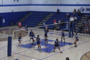 C, JV, Varsity Volleyball (94 Photos)