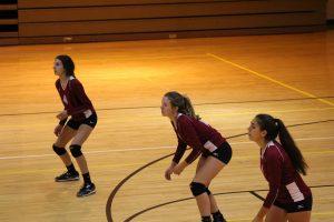 C-Team Volleyball vs. Calumet  8/28/17