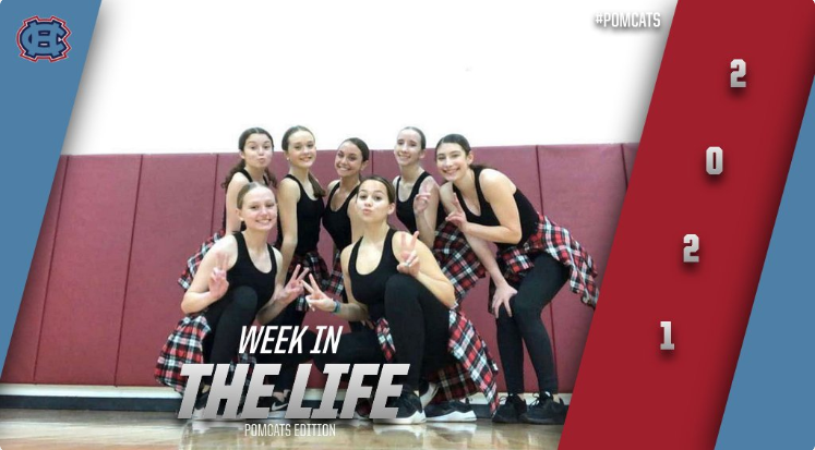 Week In The Life Of A Pomcat!