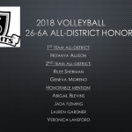 Volleyball All-District Honors
