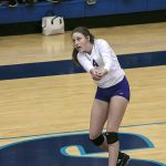 Lady Panthers advance to state semifinals