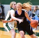 All-Sumner County girls basketball team